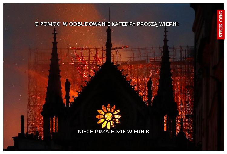 O pomoc  w odbudowanie katedry proszą wierni: